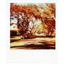 kasseta-polaroid-px680