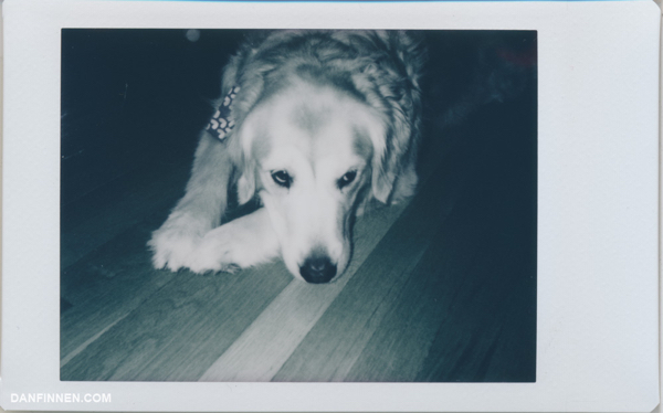 instax-mini-sample-image-monochrome