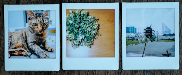 instax-square-white-frame1
